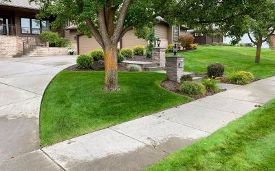 Summer and Fall Pruning For Plant's Health and Appearance