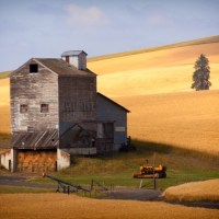 Hay is in the Barn - Tim Clune