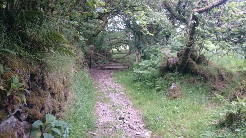 Part of the Trail after Ingra Torr