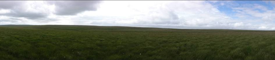 Desolate moorland all around (Panorama)