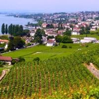 Kulinarischer Sternenhimmel über dem Schweizer Kanton Waadt