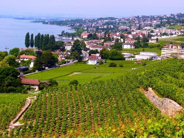 Schweiz Genferseegebiet Lavaux Lausanne
