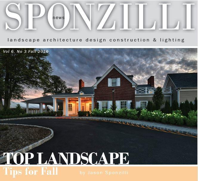 Landscape Design Questionnaire Pdf