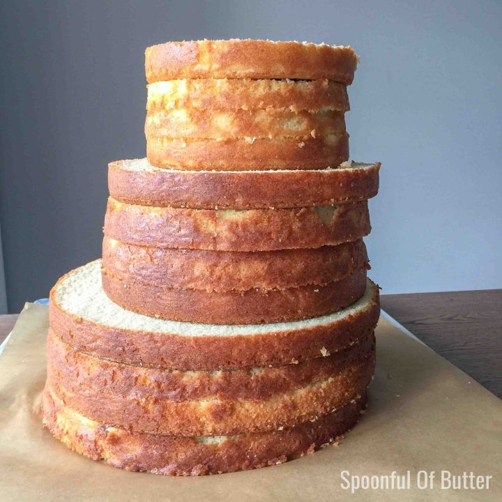 torted and leveled cake layers