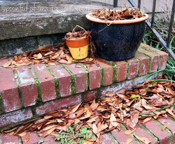 old planters