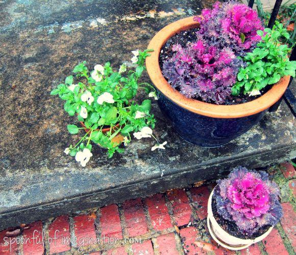 winter flower planters