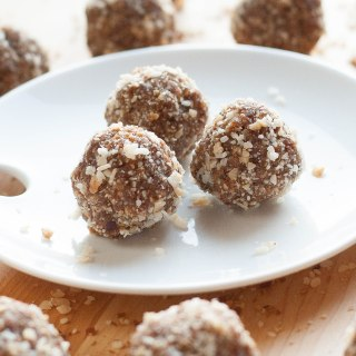 Cinnamon Toasted Coconut Snack Bites (gf, vegan)