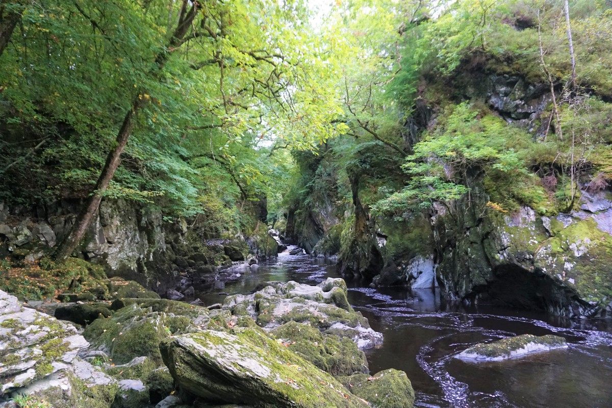 A hour in Fairy Glen in Betws-Y-Coed, Wales Review