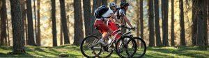 MTB Erzgebirge Sport Bachmann E-Bike Partner von Bosch