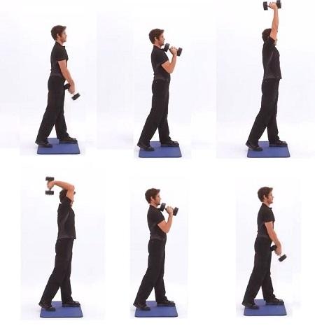 Exercice musculation bras épaules : selon la méthode fitnext.