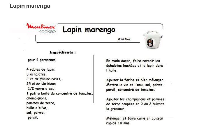 19 recettes cookeo lapin en fiches - Recette de noel au cookeo ...