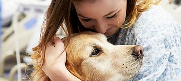 N4E Animals® Optimise l'énergie, les performances, la récupération et la résistance de votre animal.
