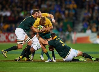 Australia v South Africa Rugby Championship Preview