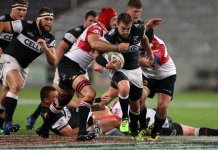 Sharks versus Golden Lions