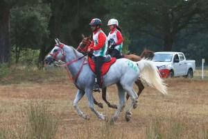 ToscanaEnduranceLifestyle-endurance-equitazione-SanRossore-Pisa-TEL2016-FR