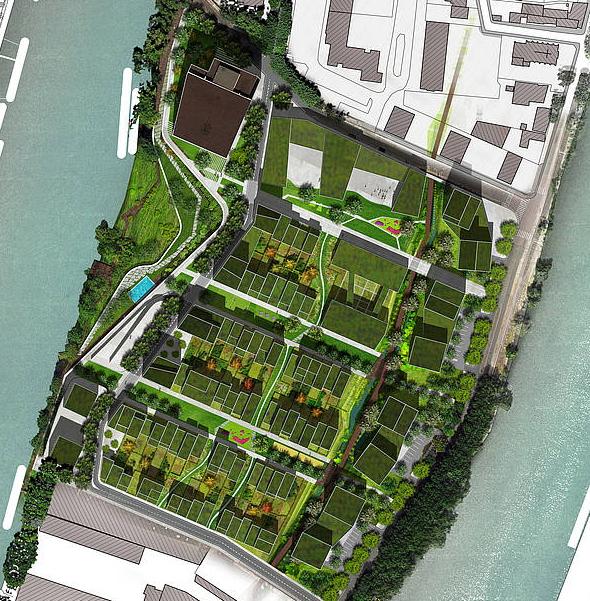 Plan de l'écoquartier de L'Île-Saint-Denis, doté de toitures végétalisés (Crédits - Plaine Commune)
