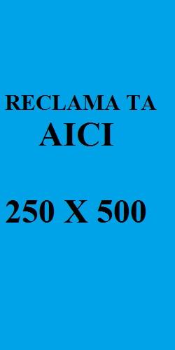 250x500