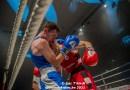 Gent boks-stad… round XXVI