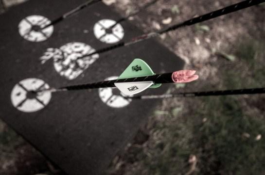 Arrows in the targettt (1 of 1)
