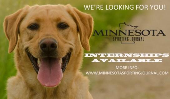 internships available