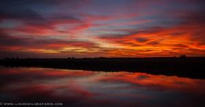 52115 - argentina sunset