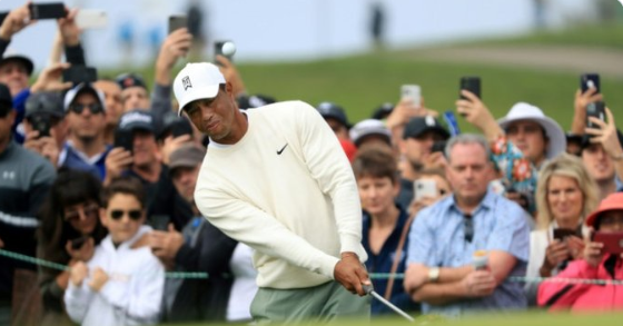 Golf: Tiger, Rory struggle as Palmer grabs Torrey Pines lead