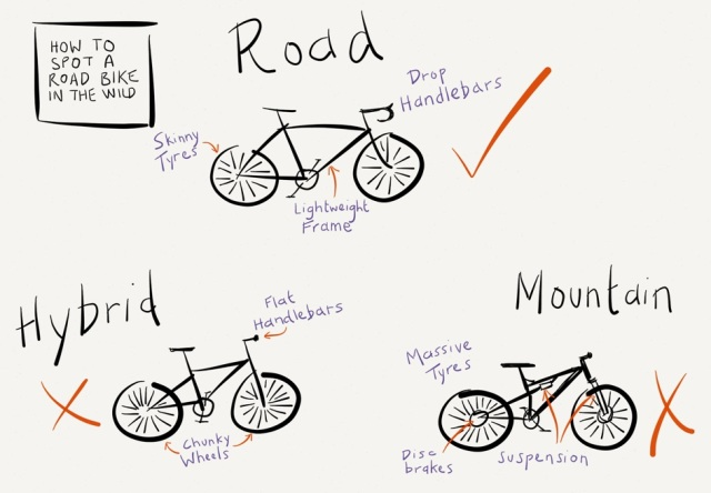 hybrid vs road bike