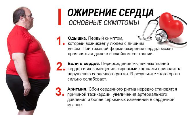 Ожирение сердца коварный спутник лишнего веса