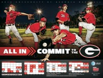 Georgia Baseball