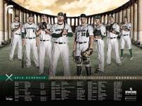 Michigan State Baseball