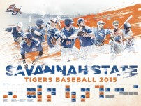 Savannah State Baseball