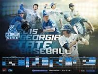Georgia State Baseball