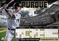 Purdue Baseball 3