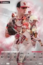 NC State Baseball 2