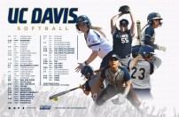 UC Davis Softball