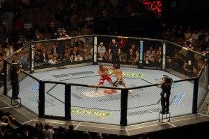 Qui pour « récupérer » le MMA en France ?