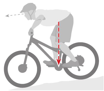 Odpowiednia pozycja na rowerze