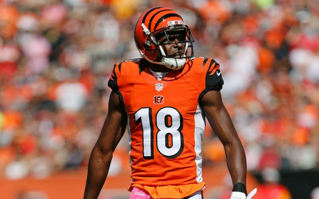 Image result for A.J. Green