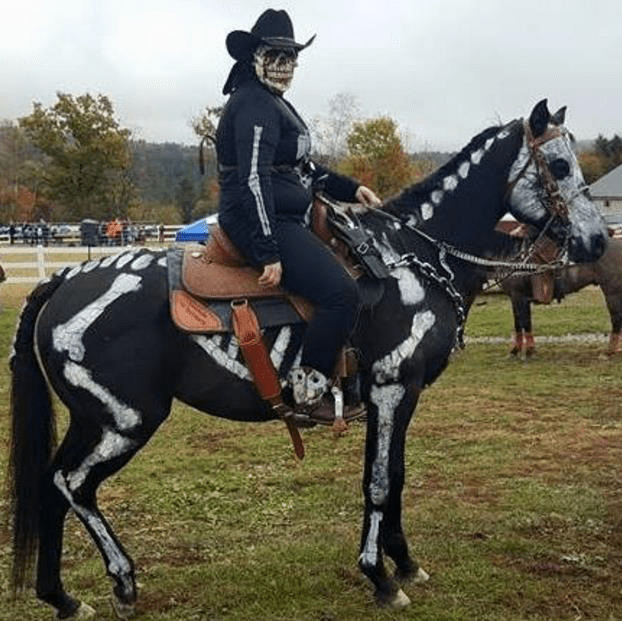Equestrian horse saddle rider halloween