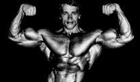 Arnold Schwarzenegger's Blueprint Training Program