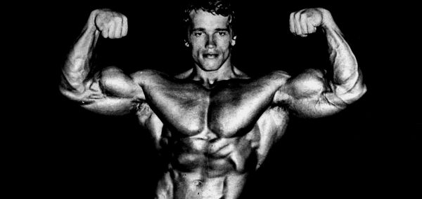 Arnold Schwarzenegger's Blueprint Training Program