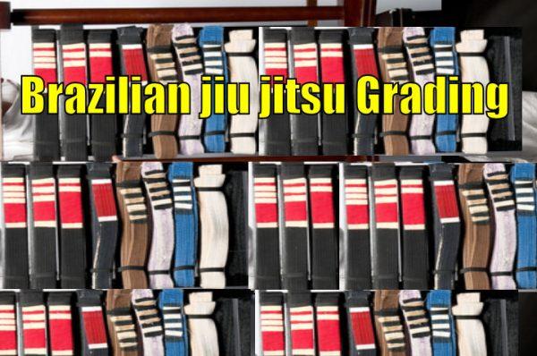 Brazilian Jiu Jitsu Grading