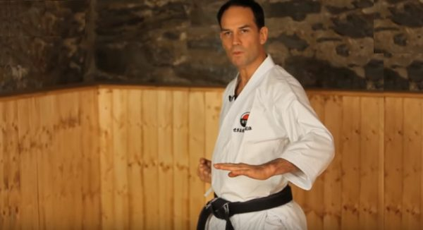 How to Do Lower Blocks in Karate
