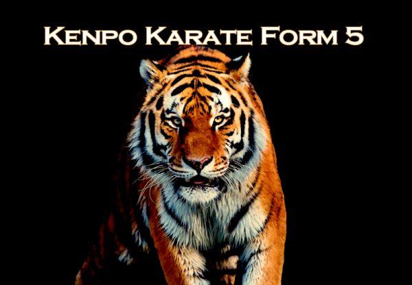 Kenpo Karate Form 5