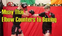 How to do Muay Thai Elbow Counters