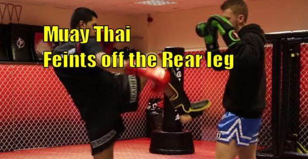 How to do Muay Thai Feints off the Rear leg