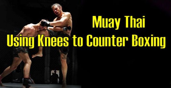How to use your Knees to Counter Boxing in Muay Thai