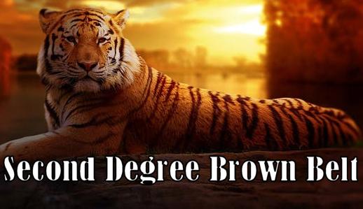 Kenpo Karate Second Degree Brown Belt