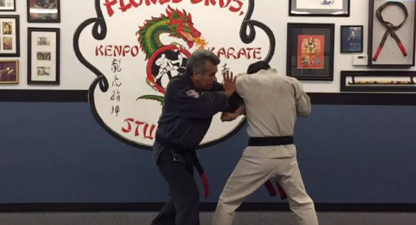 How to do Shield and Sword Self Defense Technique