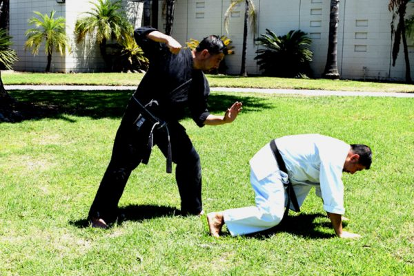 Getting ready to execute a Back Kick or Ushiro Geri